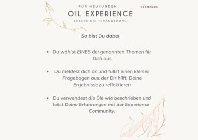 oel_experience_4